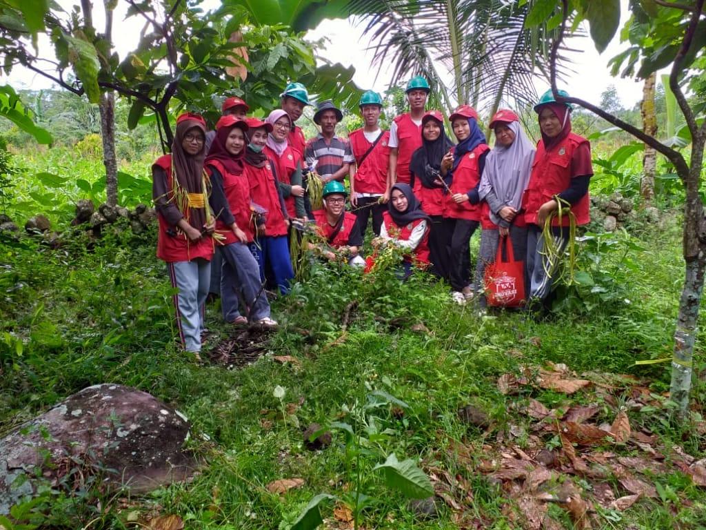 Selama satu bulan 47 mahasiswa KKN-PPM Dikti Unhas akan mendampingi petani kakao di Kecamatan Gantarangkeke, Kabupaten Bantaeng. Mahasiswa-mahasiswa tersebut berasal dari departemen berbeda dalam lingkup fakultas pertanian Unhas. (FOTO: IST)